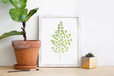 Maiden Hair Fern Watercolor Print