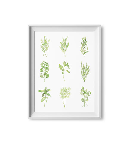 Mini Herb Watercolor Print