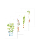 Greeting Cards - Plants 4-Pack 1