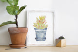 Succulent Watercolor Print