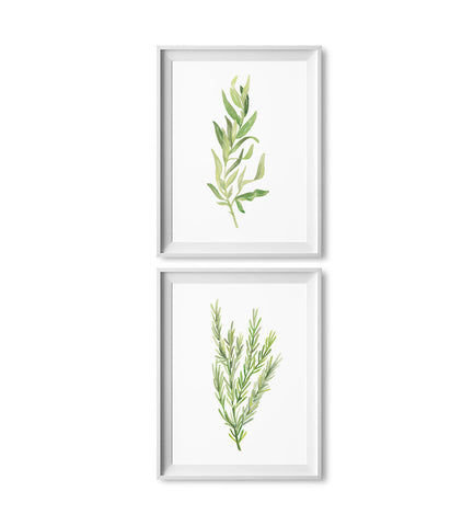 Terragon & Rosemary Watercolor Herb Prints: Two Pack