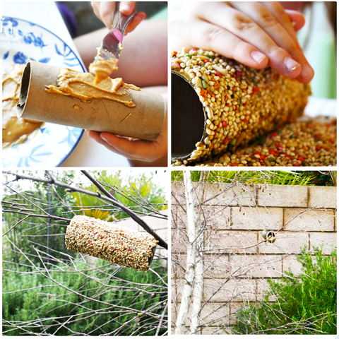 DIY toilet paper tube bird feeders