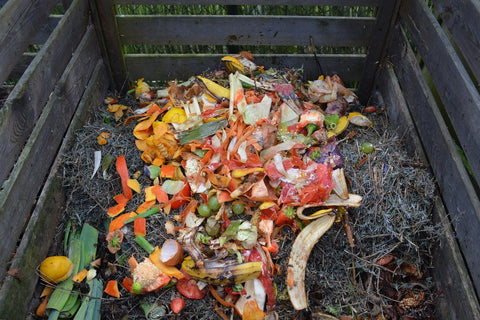 compost bin natural recycling
