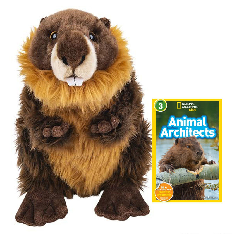 12 Inch Plush Beaver Stuffed Animal Bundle with National Geographic Readers Animal Architects (L3)