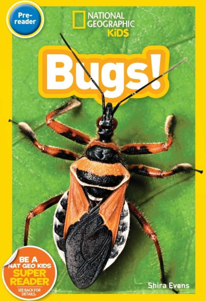 National Geographic Kids Readers: Bugs (Pre-Reader) Animal Book