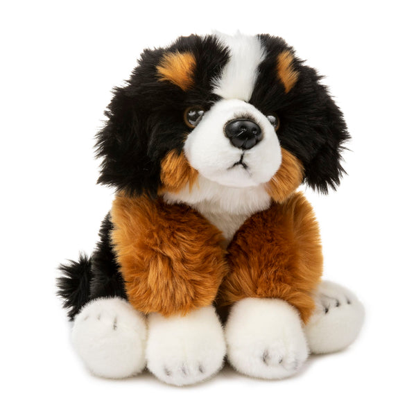 12 Inch Stuffed Bernese Mountain Dog Puppy Plush Floppy Animal Kingdom Collection