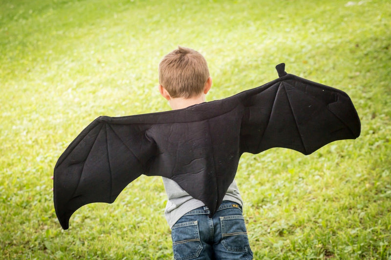 Black Bat Wings for Kids Costume, Dragon Costume and Pretend Play