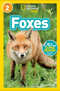 National Geographic Kids Readers: Foxes (Level 2) Animal Book