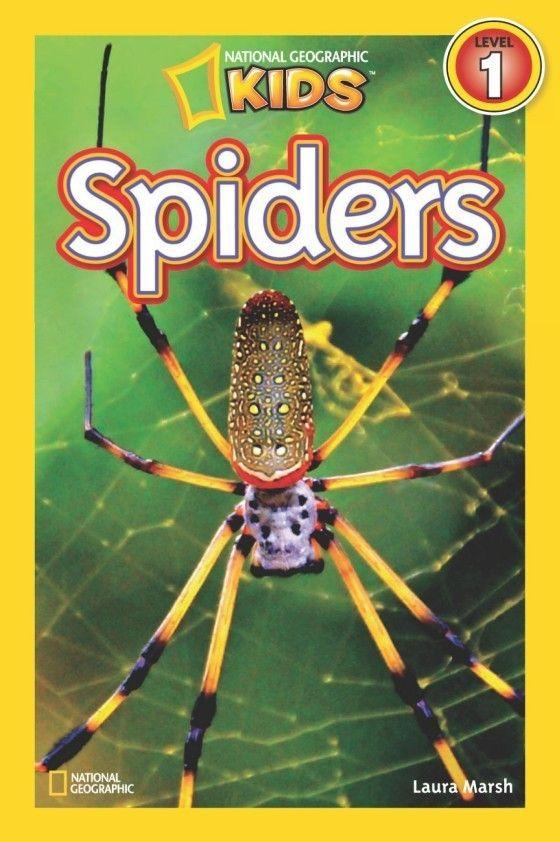 National Geographic Kids Readers: Spiders (Level 1) Animal Book