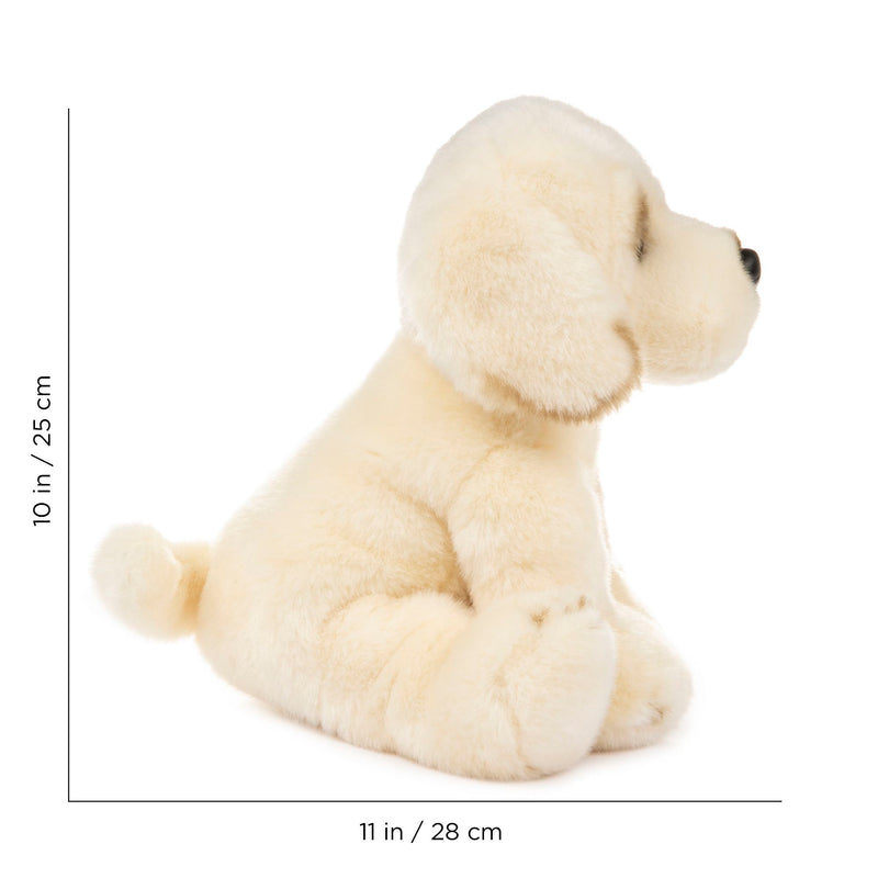 12 Inch Stuffed Golden Retriever Puppy Dog Plush Floppy Animal Kingdom Collection
