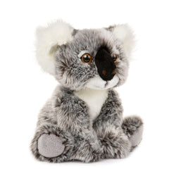 10 Inch Stuffed Koala Plush Floppy Animal Kingdom Collection