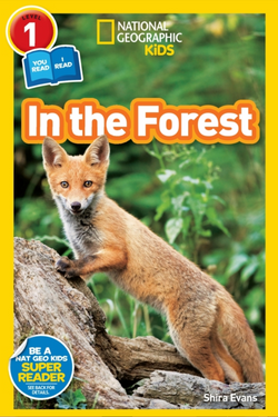 National Geographic Readers: In the Forest (Level 1 Co-Reader) Animal Book
