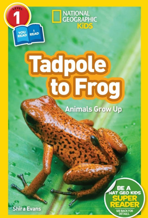National Geographic Readers: Tadpole to Frog (Level 1 Co-Reader) Animal Book