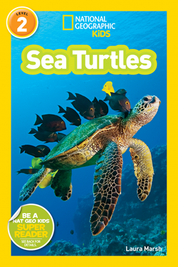 National Geographic Kids Readers: Sea Turtles (Level 2) Animal Book