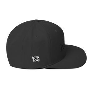 MONEY-BLACK ON BLACK-WOOL BLEND SNAPBACK