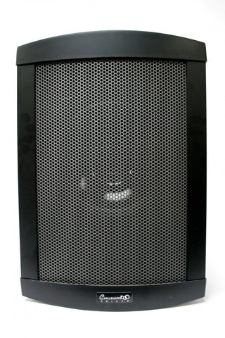 CHIAYO 100-CHG PSR Powered Extension Speaker