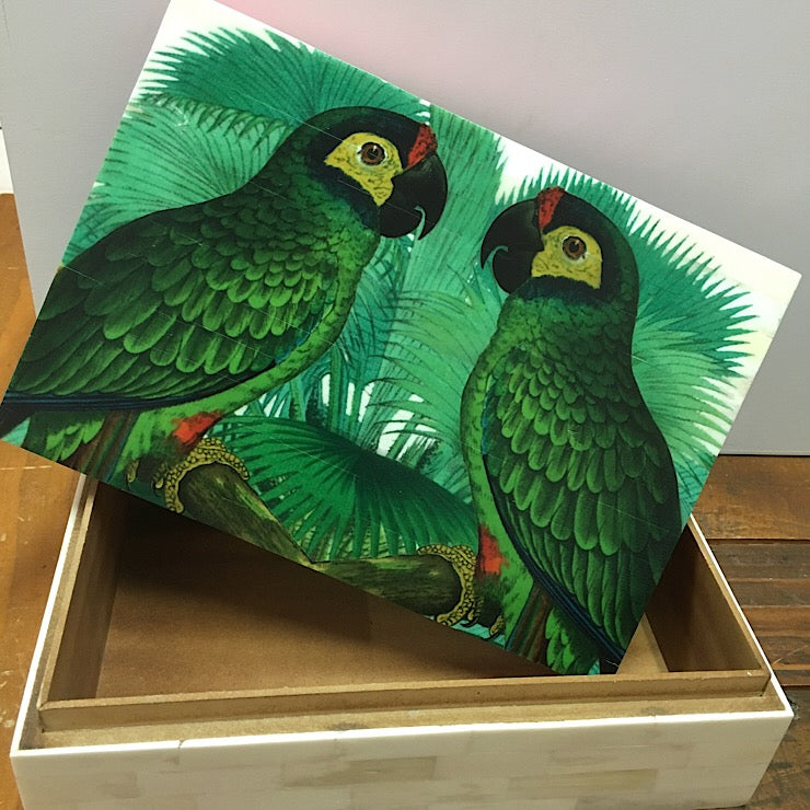 BONE BOX WITH JUNGLE MACAW