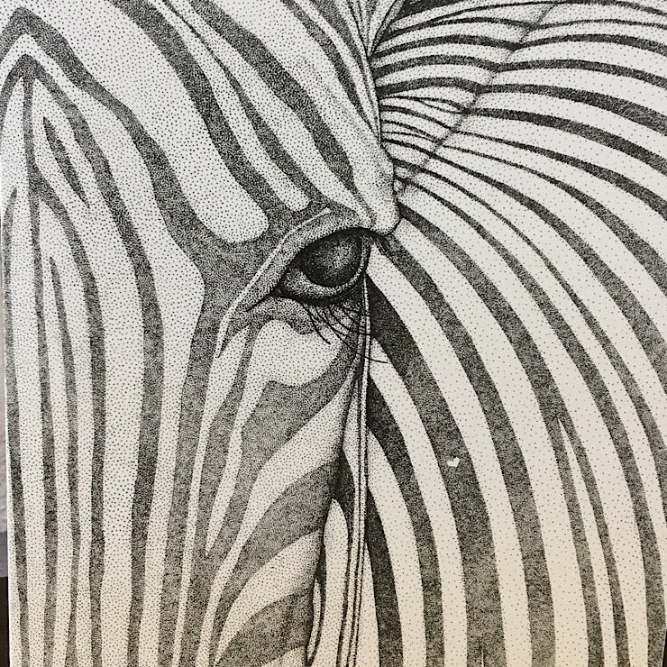 ZANE THE ZEBRA GREETING CARD