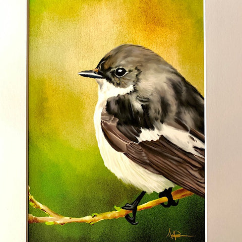 ANDI-CLAIRE PEGLER PRINT PIED FLYCATCHER