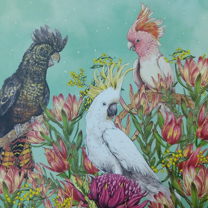 COCKATOOS OF AUSTRALIA GREETING CARD