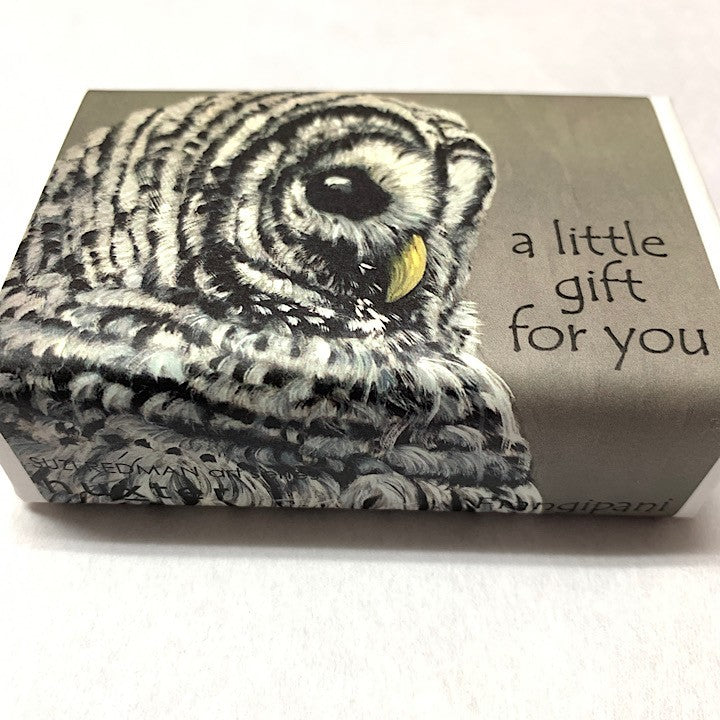 SOAP A LITTLE GIFT FOR YOU OWL