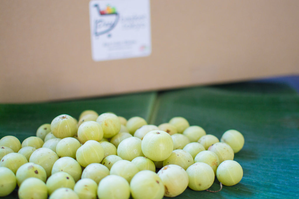 Indian gooseberry 1KG アムラ