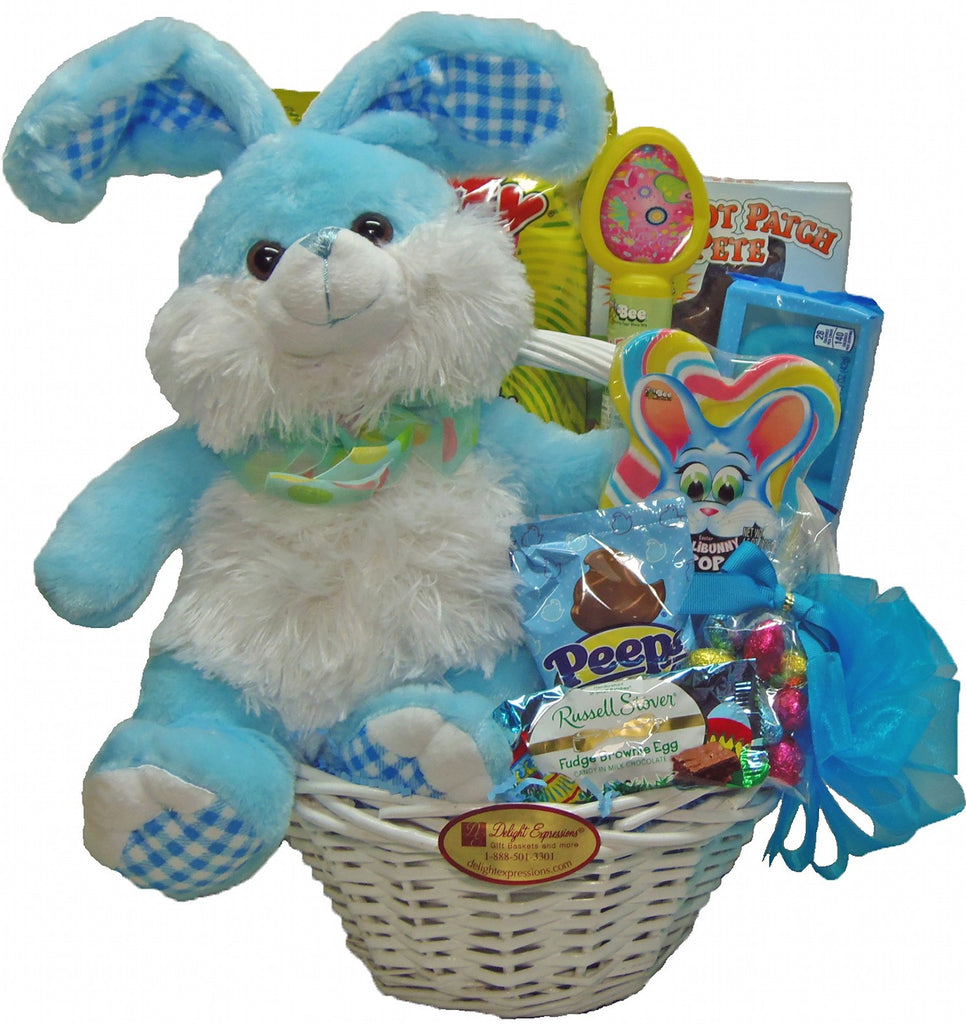 Easter gift baskets easter bunny gift basket for boys centereach easter bunny gift basket for boys negle Image collections