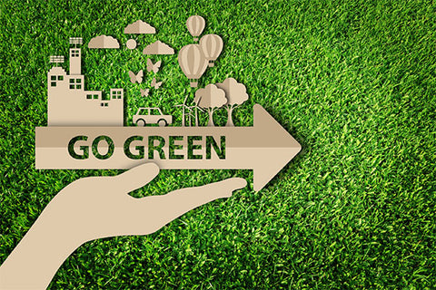 Easy Ways to Live More Green