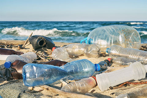 How Plastic Water Bottles are Destroying the Planet