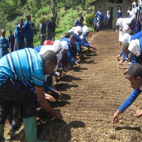 Wowe LifeStyle Gives Back Tanzania One Tree Planted
