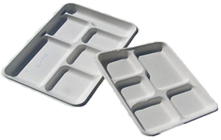 Disposable & Compostable Sugarcane Trays, 5-Compartment Tray - 125 Pack - Veroeco