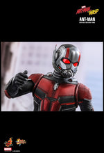 **PRE-ORDER** - ANT-MAN - Ant-Man and The Wasp -  1/6th Scale figure - Hot Toys