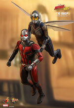 **PRE-ORDER** - THE WASP - Ant-Man and The Wasp -  1/6th Scale figure - Hot Toys