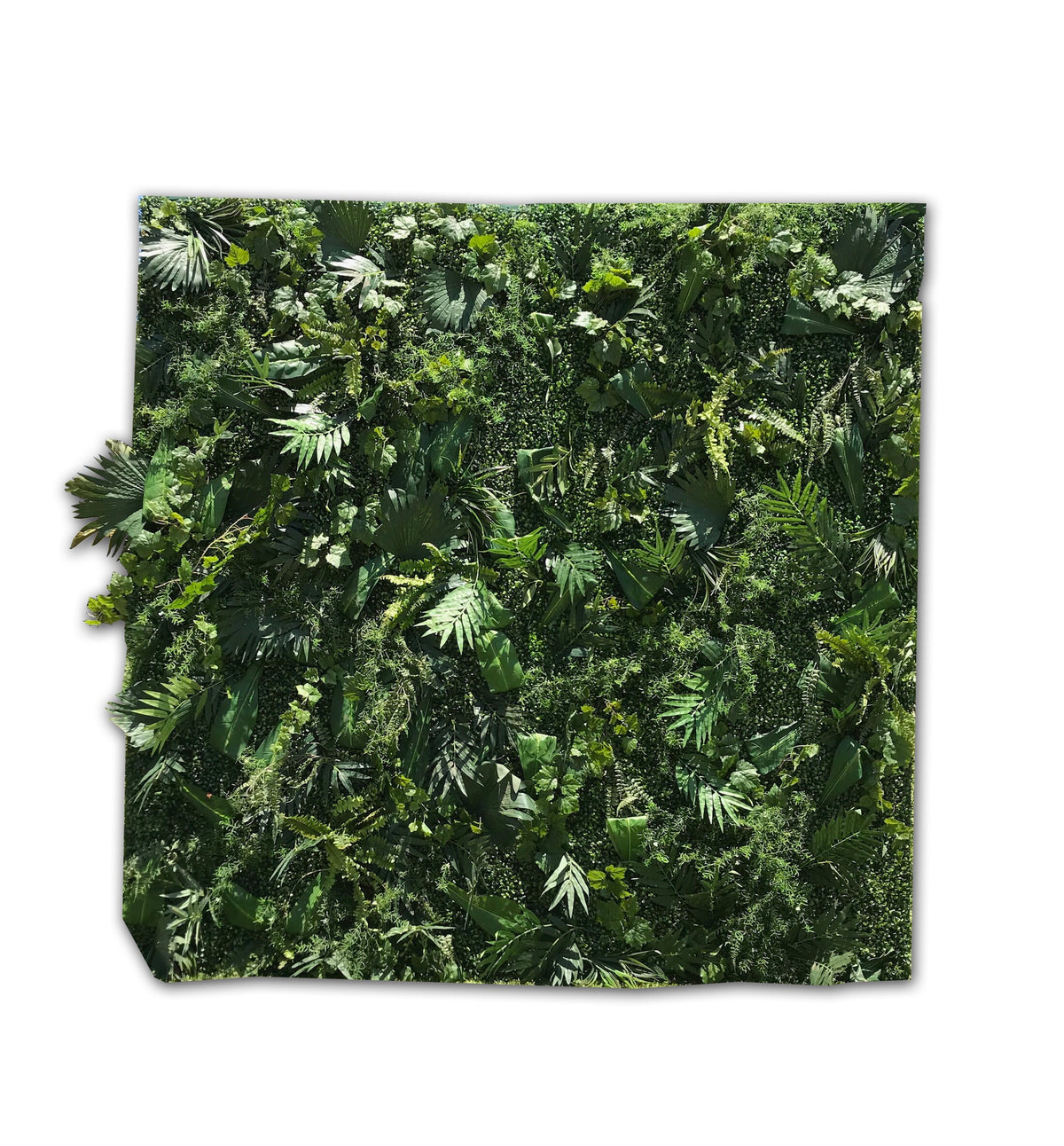 Foliage Wall Backdrop