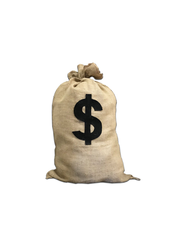 Large Money Bag
