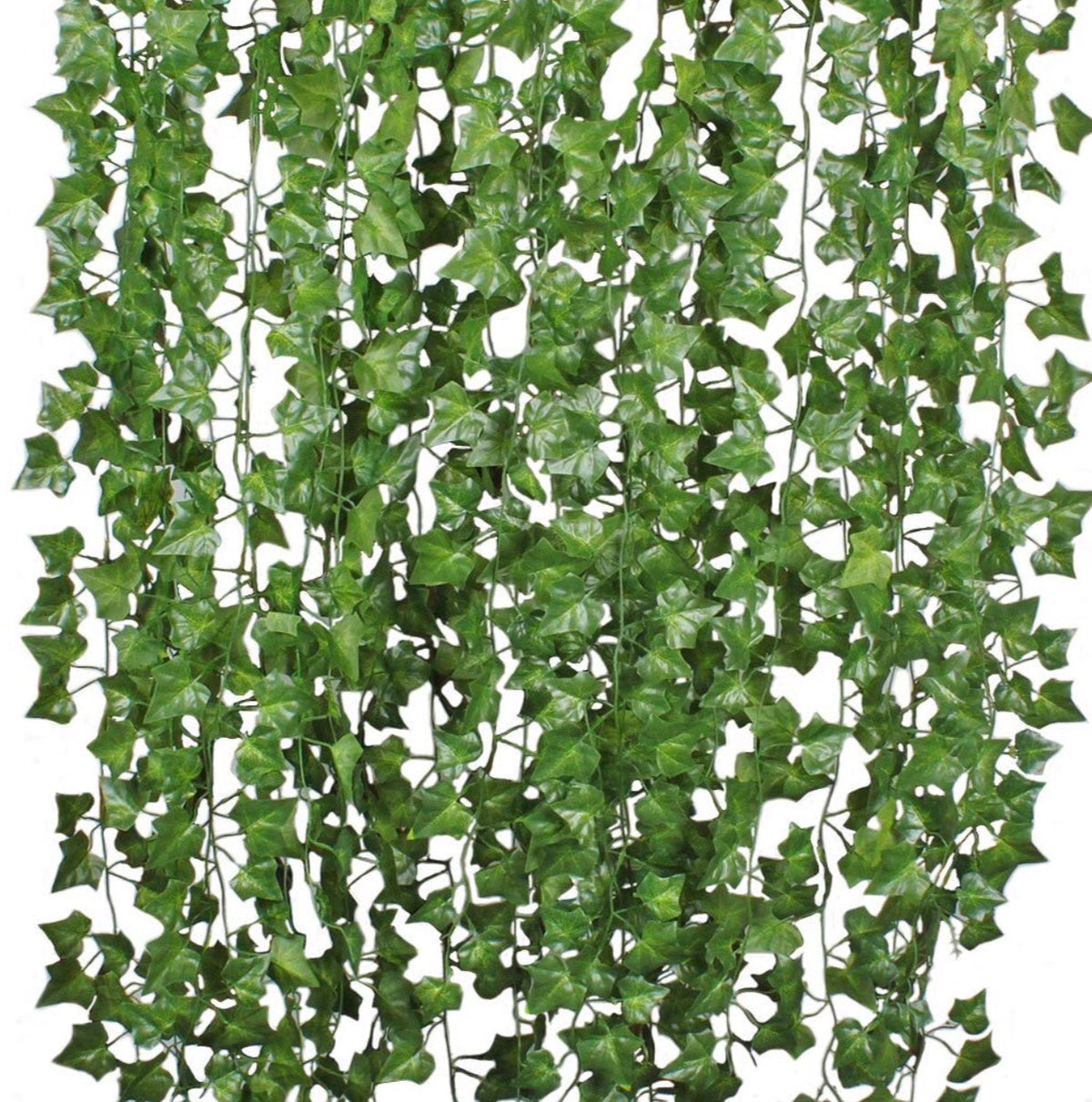 Green Vines - Platinum Prop Rentals