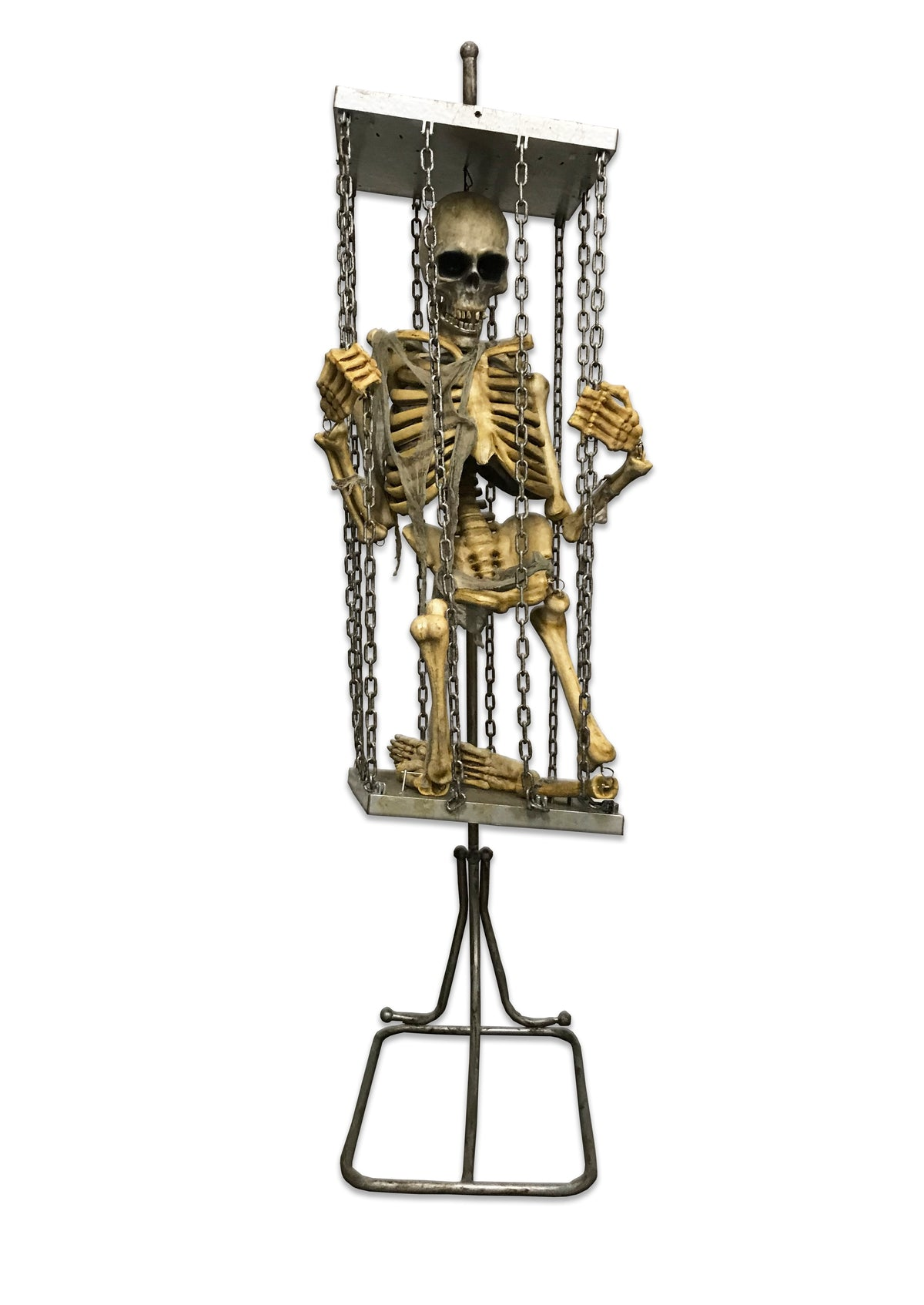 Skeleton in Hanging Cage