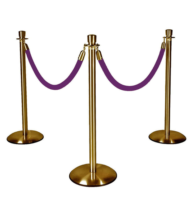 Gold Stanchions w/ Purple Ropes
