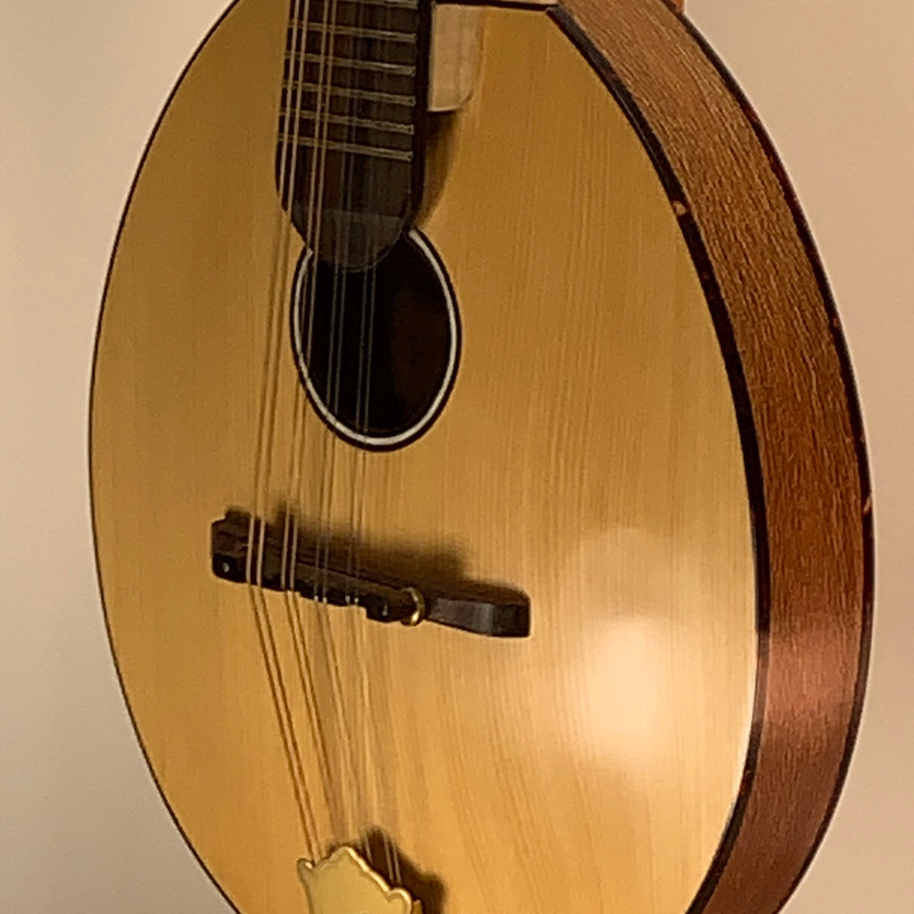 M. David Mandolins Oval Body Arched Top 0025