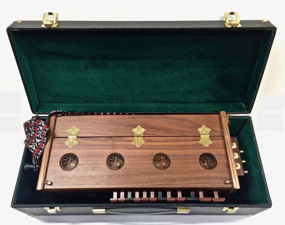 Photo of top of hurdy gurdy in its case