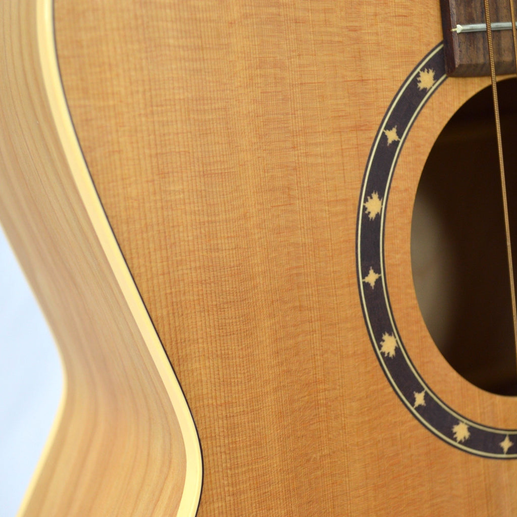 Guitars Norman B20 Folk Guitar (shop worn)