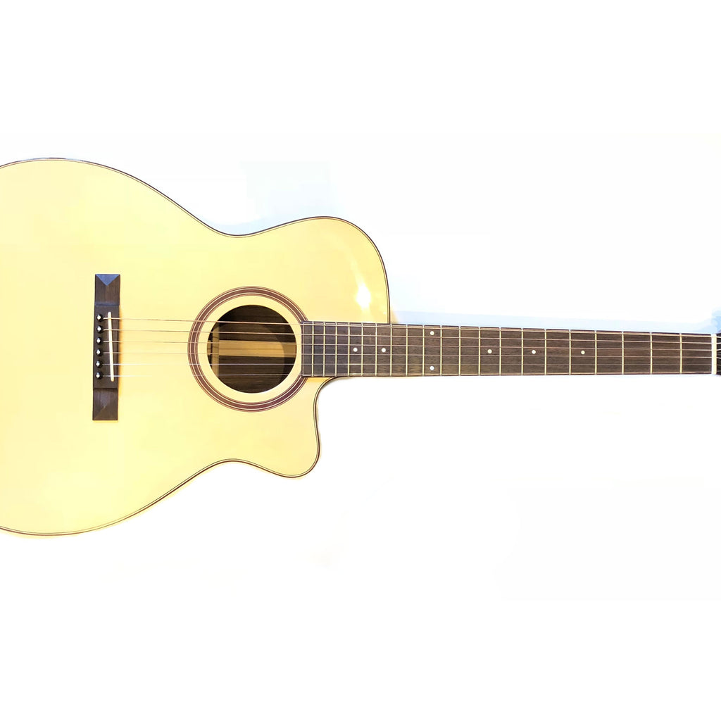 Guitars Trinity College Guitar TG-222 w/ Case