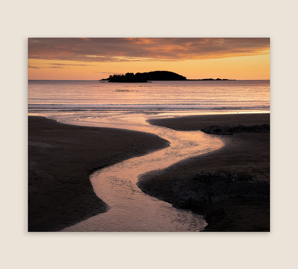 Tofino Sunset