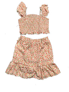 Jolene Floral Print and Skirt Set