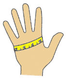 hand measurement