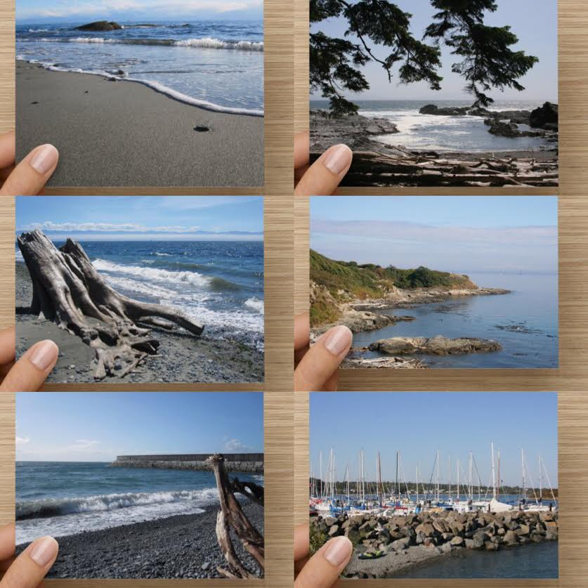 Coastal Ocean Theme Greeting Card Set of 6 - High Tide Pictures & Gifts