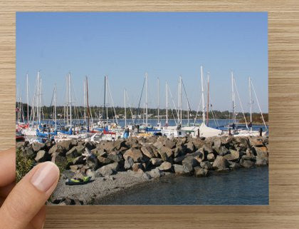 Mooring at the Marina Blank Greeting Card - High Tide Pictures & Gifts