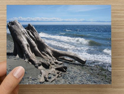 Gordon's Beach Blank Greeting Card - High Tide Pictures & Gifts