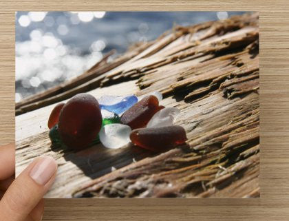 Driftwood with Sea Glass Blank Greeting Card - High Tide Pictures & Gifts