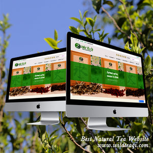 "Wild Tea Qi Named by National Press Distributors as the ""Best Natural Tea Website""!"
